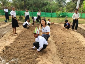 Cambodia, CCDO, volunteer and fellowship